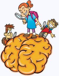 kid-brain