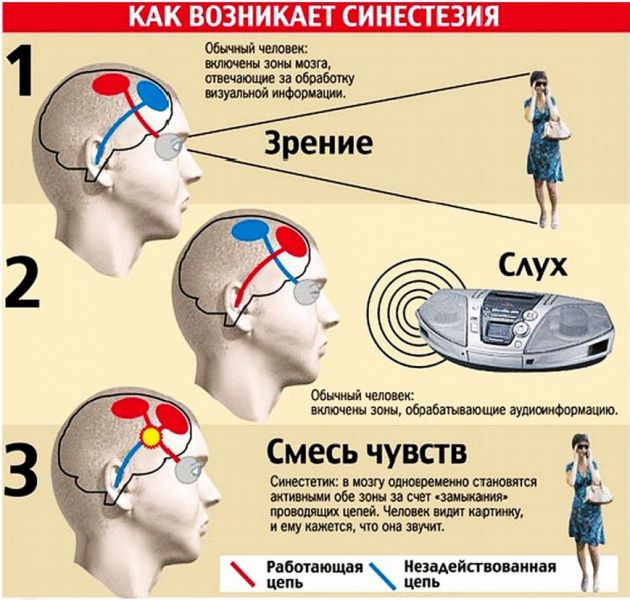 sinesteziya-oshusheniy-5