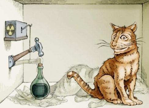 Шрёдингер кот играть